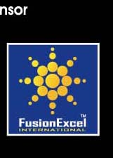 Fusion Excel_The Big Four